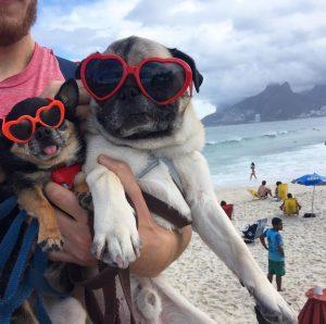 Boogie and Marcelo in Rio de Janeiro. 19787160_955263467948037_7170596993324013584_o copy 2