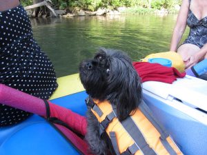 The day after the kayak disaster, we tried floating in a raft. He liked this much better. He's