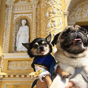 Boogie and Marcelo in Guatemala 26904565_1058778254263224_6067148955889367221_n copy