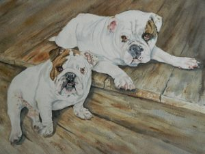 11 x 14 WatercolorBulldogs