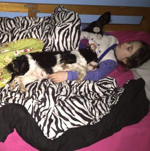 Callie and Gigi sleepingCallie and me napCallie and PippinCallie and Solly
