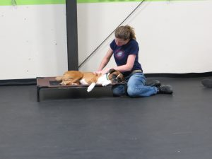 Learning Conditioned Relaxation at the Kayce Cover seminar.Dash's moment of zen