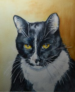8 X 10 WatercolorMr. Whiskers