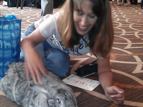 Searching through older folders I stumbled across some of the photos I took at the 2013 BlogPaws con