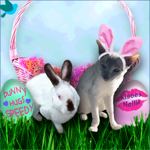 Nellie and Me Had the best Good Friday Celebrations,Hop on over to my blog to See,Have a Happy Easte