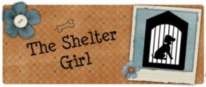 Visit my blog!Shelter Girl