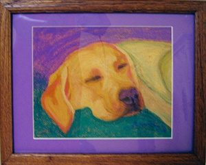 This pet art pet portrait is done in pastels. I drew it from my dog Maya when she was a puppy. this