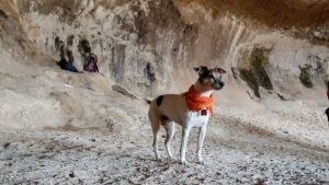 Wave Cave. Hope is observing her friends at play!Supes6