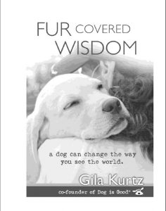 Reading a great book on dogs. Written Gila Kurtz it's: Fur Covered Wisdom: A Dog Can Change th