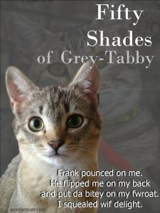 Dori loves to wrassle with Frank. But this might be pushing it a bit too far. fiftyshadesofgreytabby