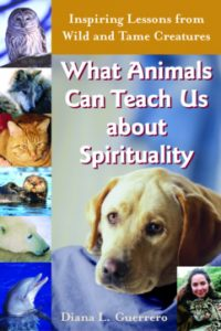What Animals Can Teach Us…is a collection of stories about how humans can grow from relationsh