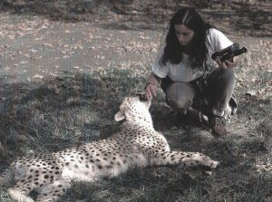 Making new friends!cheetah