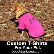 Baby, the first Boss of PoochParkWear, RIP sweet one,Baby in her famous t-shirt