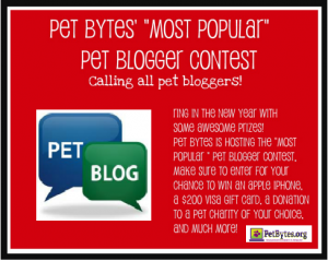 Searching for the best Blogger out there!Most Popular Blogger Contest!