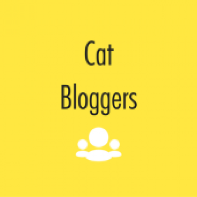 Group logo of Cat Bloggers